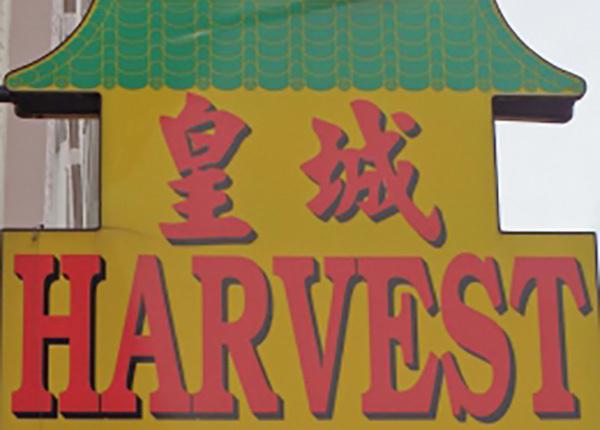 Webcollectie Chinese gemeenschap in