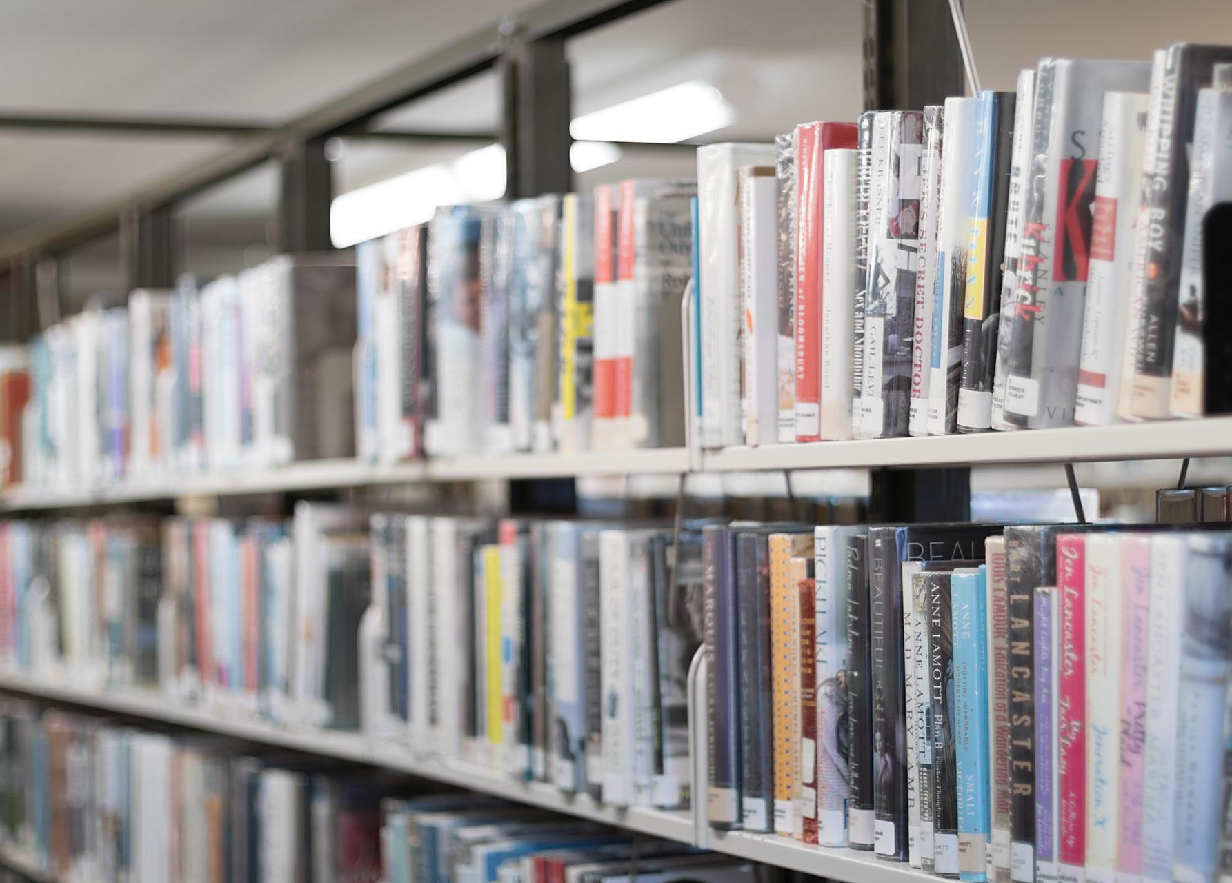 Bibliotheekboeken in de kast